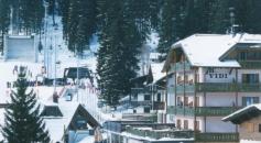 Alpen Hotel Vidi - Madonna di Campiglio-2